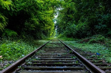 nature-forest-industry-rails-large